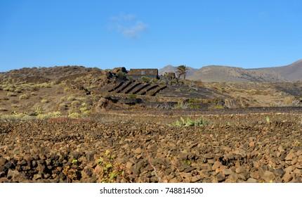landscape in Lanzarote, canary islands, Spain