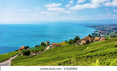 Landscape of Lavaux Vineyard Terrace hiking trail, Lake Geneva and Swiss mountains, Lavaux-Oron district, Switzerland