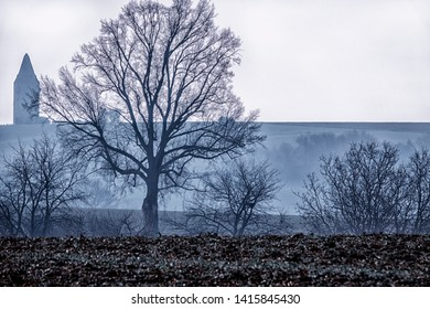 landscape with leafless tree and bushes on a field under a cloudy white sky in late autumn, germany