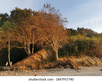 Landscape in the light of the setting sun - Shutterstock ID 1847957740