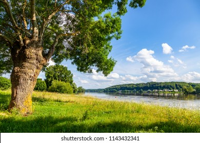Landscape at the Loire river, France