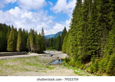 Landscape from Lotru river source in Romanian Carpathians mountains with pine forests around