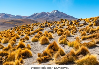Landscape of the majestic Andes mountain range in Bolivia, South America.