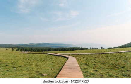 Landscape of Malun alpine pasture with wooden paths  in Xinzhou, Shanxi, China