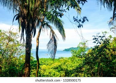 Landscape in Manuel Antonio National Park, Costa Rica