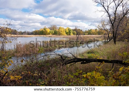 landscape of marshes pond and forests within minnesota valley national wildlife refuge in eagan minnesota