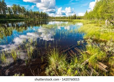 Landscape of the marshland along Soralven river in Dalarna county of Sweden.