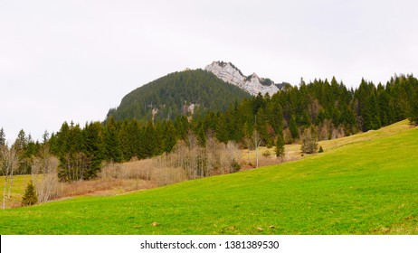 Landscape with meadow, forest and mountain in the Entlebuch UNESCO Biosphere Reserve, Switzerland, on a spring day