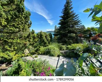 Landscape of the Mediterrannean Terrace or Mediterran-Terrassen (Flower Island Mainau on the Lake Constance or Die Blumeninsel im Bodensee) - Constance, Germany / Konstanz, Deutschland