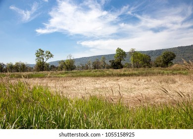 landscape medow and mountain in summer day of Thailand