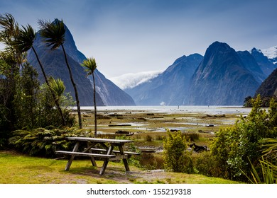 landscape at milford sound, New Zealand