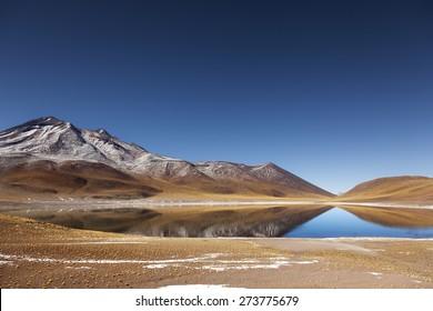 Landscape. Miniques Lagoon in San Pedro Atacama, Chile