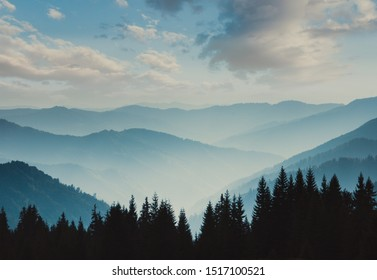 Landscape of misty mountains. View of coniferous forest, layers of mountain and haze in the hills at distance. Beautiful cloudy sky. Tourism and travelling.