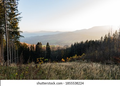 Landscape misty panorama. Fantastic dreamy sunrise on rocky mountains with view into misty valley below. Foggy clouds above forest. View below to fairy landscape. Foggy forest hills.