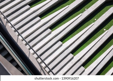 Landscape in Modern building Outdoor Hardscape cement stair step with green grass Architecture detail