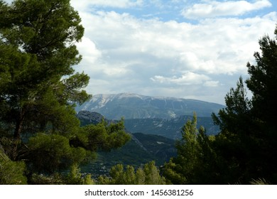Landscape of the Mont Ventoux, Ventoux mountain. In the foreground pines. A cloudy sky. Spring in France, Provence.