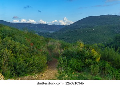 Landscape of Mount Carmel, a National Park area. Northern Israel