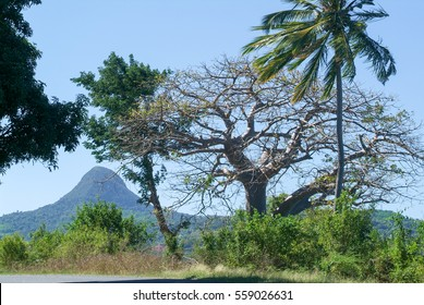 Landscape with mount Choungui on the island of Mayotte, France