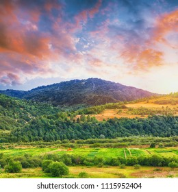 Landscape of a mountain hill at daytime. Mountain landscape in summer with cumulus clouds. Mountain meadow with fresh green grass. View at a mountain valley in