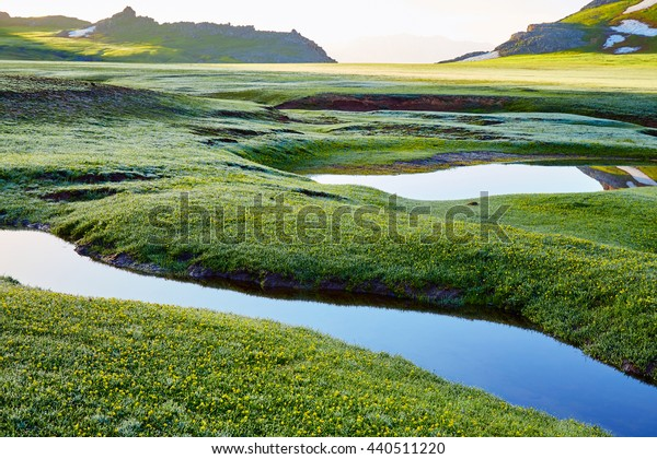 Landscape of the mountain valley with streams early in the morning at sunrise in the spring