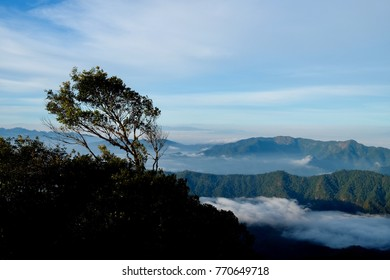 Landscape mountain view and sea of mist,View point of Doi Pha Hom Pok National Park in Chiang Mai,North of Thailand.
