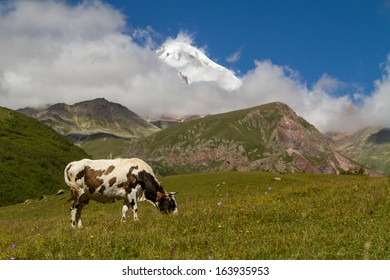 landscape of mountains in the background of the cloudy sky