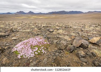 Landscape with mountains - Iceland