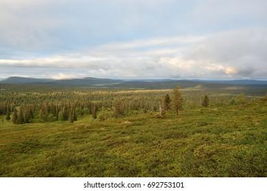 Landscape with mountains in Lapland, Pallastunturi, Taivaskero