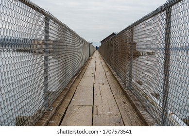Landscape of narrow wooden pier enclosed with chain link fencing above water in Garibaldi Oregon