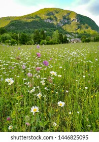 landscape of national park in Slovenia
