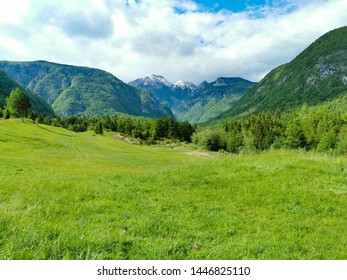 landscape of national park in Slovenia