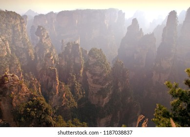 Landscape nature view of Zhangjiajie have thousands of jagged quartzite sandstone columns, many of which rise over 200m at Wulingyuan Scenic Area China