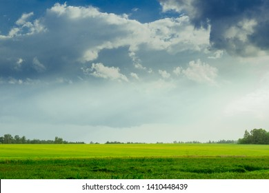 Landscape. Nature. Yellow and green grass. Blue sky. Gray clouds. Sunlight.