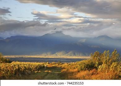 Landscape near Ikalto (Iqalto). Kakheti. Georgia