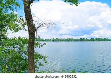 Landscape near the lake in the summer
