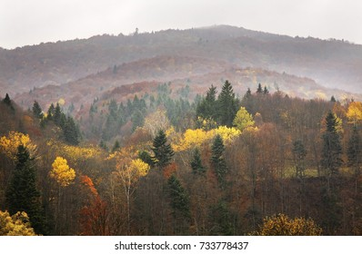 Landscape near  Leluchow. Poland