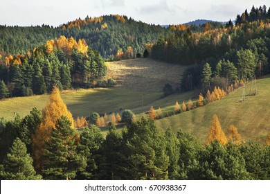 Landscape near Zlockie village. Muszyna district. Poland