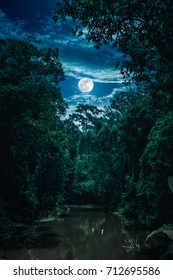 Landscape of night sky with clouds and full moon over serenity nature in forest, dark tone. Tranquil river and trees in the evening at national park. The moon taken with my own camera.