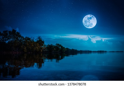 Landscape of night sky with many stars. Beautiful bright full moon and cloudy above silhouettes of trees, lake area. Serenity nature background. The moon taken with my camera.