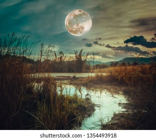 Landscape at night time in the forest lake and darkness sky super moon in the background.The foreground is a small stream flowing from the lake.The moon taken with my camera.