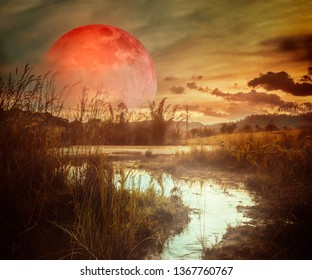 Landscape at night time in the forest lake with fogy and darkness sky super blood moon in the background.The foreground is a small stream flowing from the lake.The moon taken with my camera.