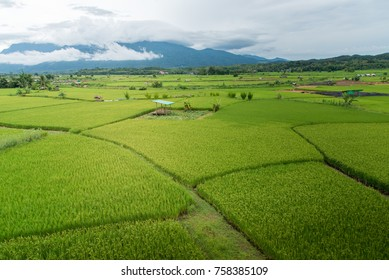 Valley F Images Stock Photos Amp Vectors Shutterstock