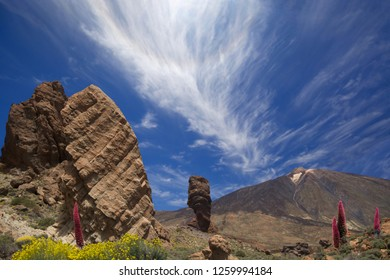 Landscape off Tenerife with in the background the Pico del teide