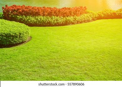 Fresh Cut Grass Images Stock Photos Amp Vectors Shutterstock