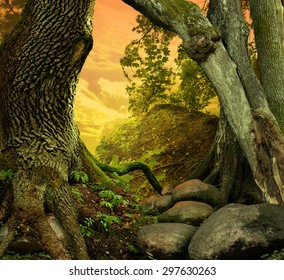 Landscape with old crooked trees, red sunset sky, roots and stones