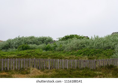 landscape with old fence