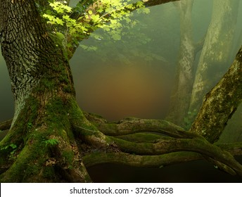 Landscape with old mossy tree, foliage, roots and red mysterious shine