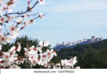 landscape of old village, Monsaraz, Portugal