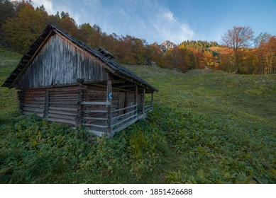 Landscape with an old wooden mountain hut, surrounded by trees. Located in Buila Vanturarita National Park, Oltenia, Romania