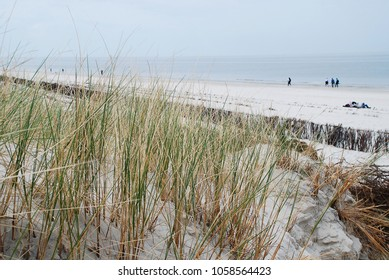 Landscape on Amrum, Germany. Amrum is one of the North Frisian Islands on the German North Sea coast, south of Sylt and west of Foehr